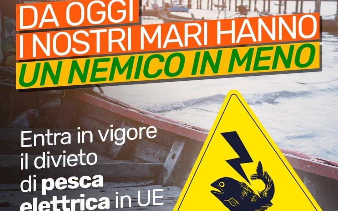 IN VIGORE IL DIVIETO DI PESCA ELETTRICA NELL'UNIONE EUROPEA